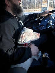 Kisska snuggles with Bill Masters as he and his wife deliver her across the country.