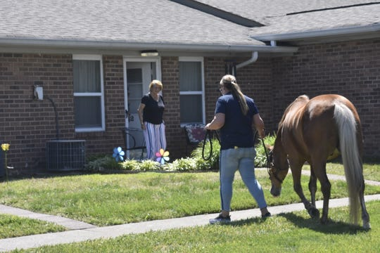 Residents of Red Cedar Glen in Hendersonville step outside as horses from CRA Equestrian walk around the community on Friday, May 1.