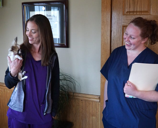 Dr. Kari Nugent of Westland's Unleashed Pet Care holds her chihuahua Aiden as technician Maggie Nowicki smiles on May 4, 2020. The veterinary clinic is hoping to move soon to Livonia.