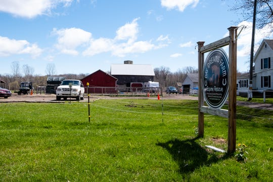 Lisa Ponke, owner of the nonprofit Day Dreams Farm Equine Rescue and Rehabilitation in Cottrellville Township, said if the stay at home order continues and people aren't able to donate to nonprofits like hers, eventually tough decisions will need to be made.