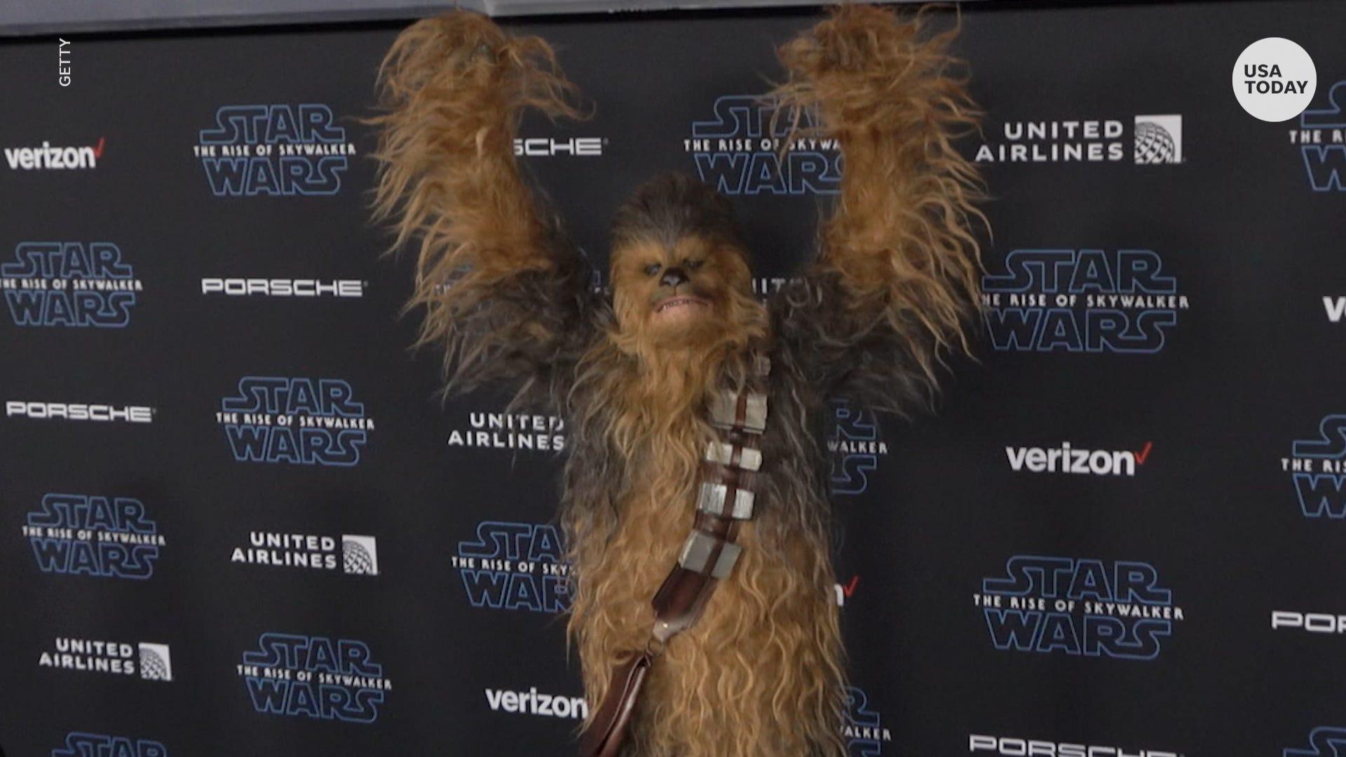 Star Wars Day From Films To Legos 6 Ways To Celebrate In Quarantine