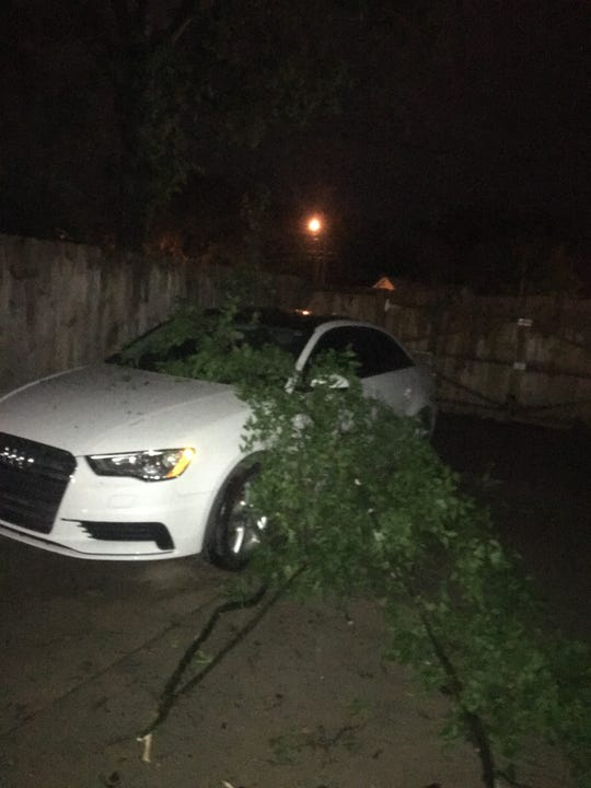 """A tree falls on a car in North Nashville during """"wake low"""" winds, following a severe thunderstorm on Monday night."""