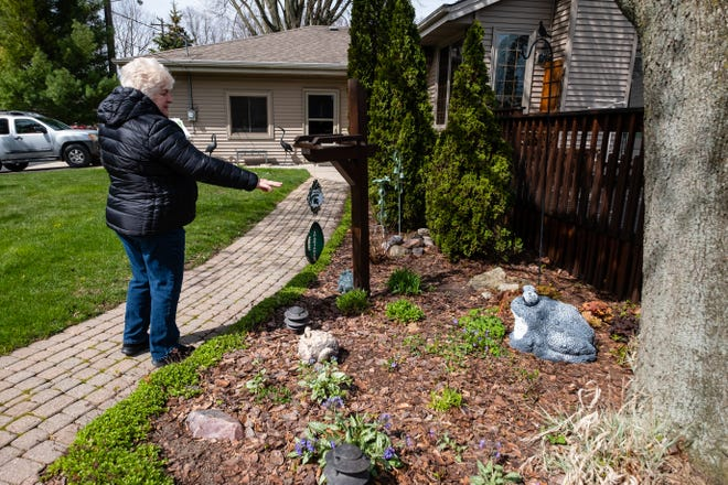 Eve Meddows talks about some of the wildlfowers growing in her yard Tuesday, May 5, 2020, in Fort Gratiot. Some experts are recommending people stuck at home during the quarantine to garden and landscape with plants native to Michigan, which offer ecological benefits for insects and the animals that eat them.