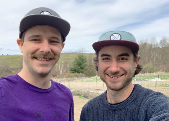 "Matt Lasser, right, and Josh Fisher, co-owners of Reap and Sow Farm in Hinesburg, pause for a field-side photo on May 6, 2020. Lasser and Fisher, longtime old friends and both 30, went out on a limb and bought a tractor for the fledgling Reap and Sow Farm in Hinesburg. ""We'd just finished building a greenhouse — and then all the restaurants closed down,"" Lasser said. The two are postponing their restaurant-centric business model — for now."