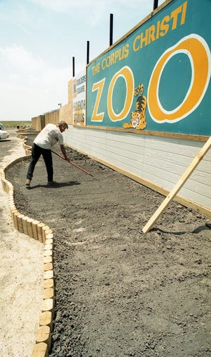 Robert Bennett with The Fruitful Vine Landscape Services prepares the newly constructed beds in front of the Corpus Christi Zoo for xeriscaping on Aug. 2, 1996.