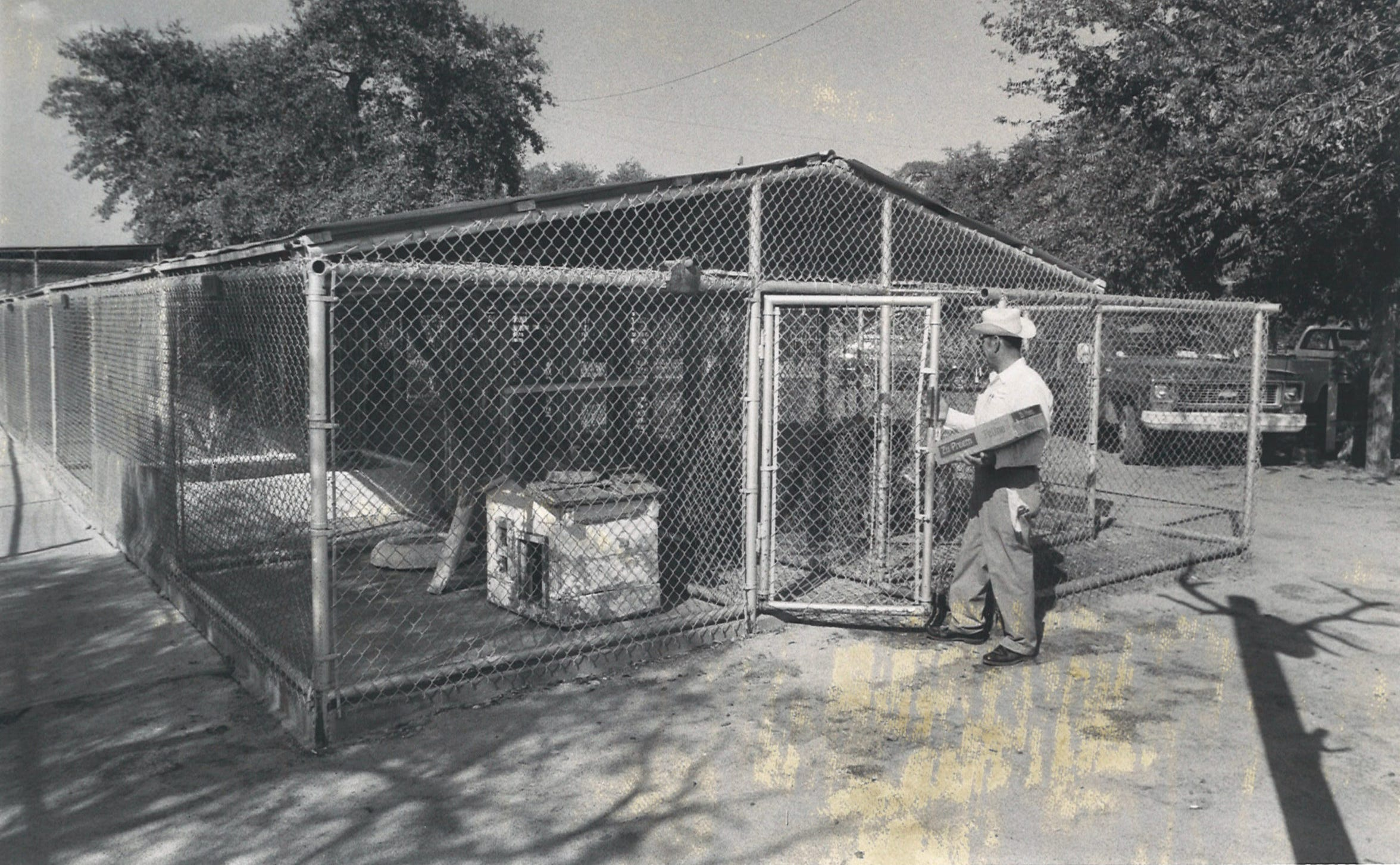 One of the enclosures at the Park Welder Zoo in Sinton in 1978.