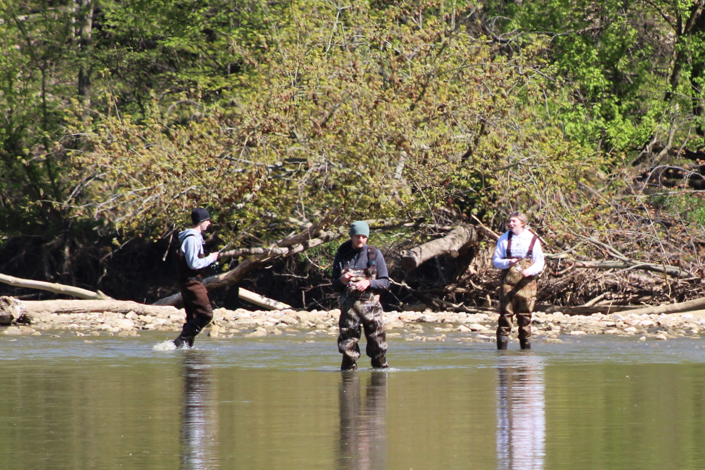 Three fishermen venture out from a rocky area and wade into the Sandusky River Wednesday near River Cliff Park. With the park reopened to vehicular traffic Tuesday after being closed for about a month, more fishermen showed up to take part in the river's annual white bass run.