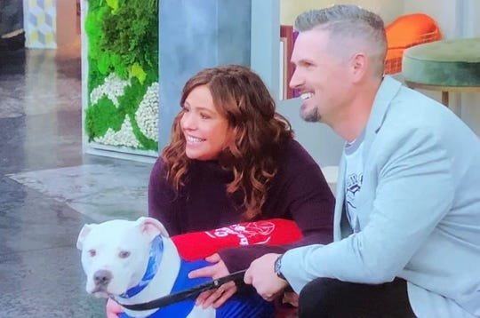 Cole the Deaf Dog and his partner, Chris Hannah, a Mennies Elementary School music teacher, taped a segment for the Rachael Ray Show, which is tentatively scheduled to air May 7.