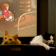 The Quarantine Cat Film Festival will harness the power of cat videos to raise money for independent theaters.