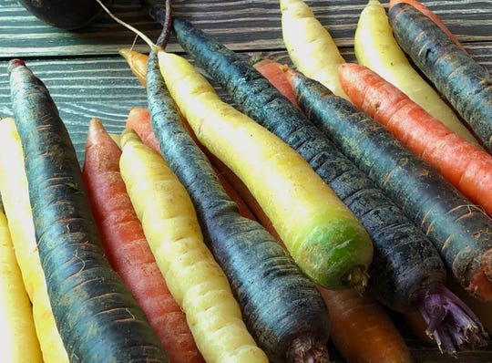 Several varieties of carrots are grown on Providence Organic Farm in Central Lake.