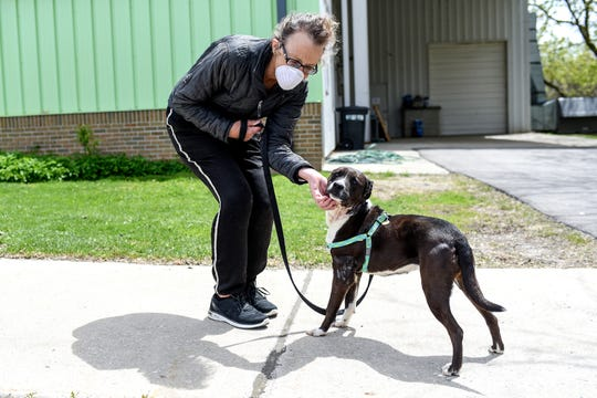 Volunteer Mara Zile walks a mixed breed dog named Polo outside the Capital Area Humane Society on Friday, May 8, 2020, in Lansing.