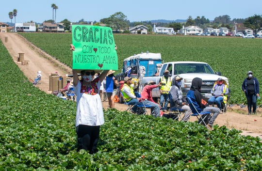 "Janet Johns, holds a green sign that reads ""Gracias con todo nuestro amor,"" which translates to ""Thank you with all of our love"" during the Watsonville Campesino Appreciation Caravan on Tuesday, May 5, 2020."