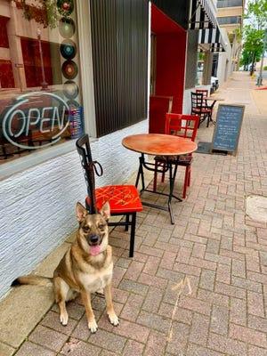 Restaurant reopenings