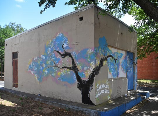 A mural of hope, Backdoor Blossom, was painted by Gaya Khmoyan on a building adjacent to Backdoor Theatre recently and people are encouraged to add words of positivity and hope with chalk provided.