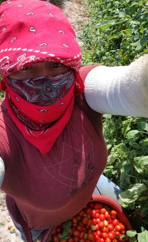Yoly Lopez, a farmer worker in Florida, wears a bandana provided by Redlands Christian Migrant Association. The group recently distributed masks and bandanas to farm workers to help during the coronavirus outbreak. Photo courtesy of Yoly Lopez.