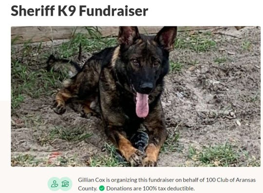 The Aransas County Sheriff's Office is raising money for a K-9 after Kilo died suddenly on May 1, 2020.