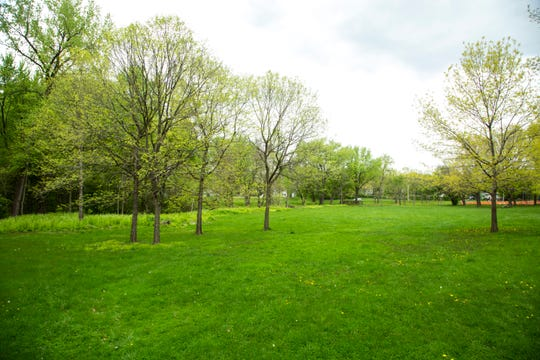 An open area off of the Willow Creek Trail is seen, Monday, May 11, 2020, at Willow Creek Park in Iowa City, Iowa.