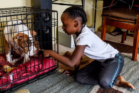 A'Nailah Clark, 6, pets her dog Polo's nose near A'Nailah's mother's work station on Monday, May 11, 2020, in Lansing. Her mother Angelia is navigating the challenges of working from home, and caring and homeschooling her four children.