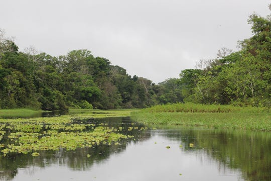 A photo of the Amazon River near Ayacucho, Peru. Barbara Land, founder and executive director of the Nevada Building Hope Foundation, often visits remote river villages in the jungle to provide aid to the local residents there.