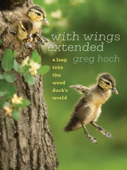 "The cover of ""With Wings Extended"" by Greg Hoch."