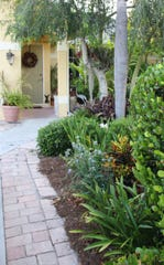 Florida wastes a lot of water on grass and other plants not well-suited to our heat, rain, and seasonal drought. Choosing the right plants can help save water and cost to the homeowner.