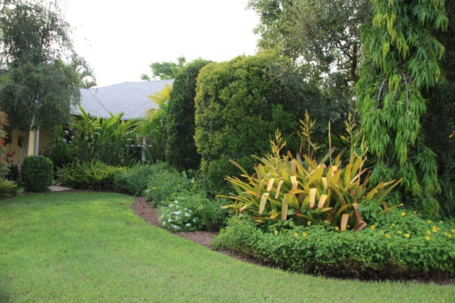 The University of Florida's Center for Landscape Conservation and Ecology created the official Florida-Friendly Landscaping™ program that advises on using low-maintenance plants and environmentally sustainable practices ideal for this area.