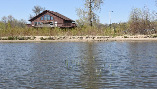 Bulrush begins to emerge from the water at Little Rock Lake Tuesday, May 12, 2020, at Benton Beach. The lake is being watched intently this year after a drawdown late last summer aimed to improve its water quality.