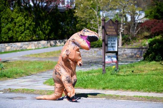 T. rex strolling in Pleasantville