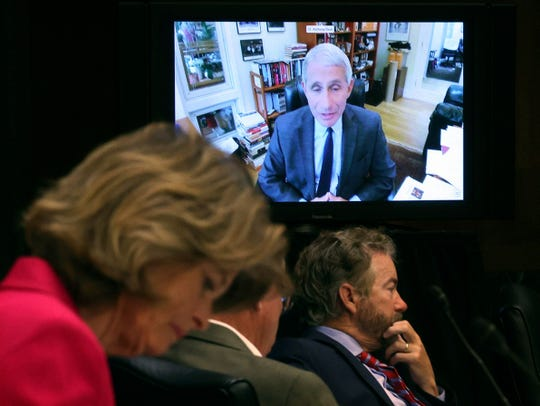 Senators listen as Dr. Anthony Fauci, director of the National Institute of Allergy and Infectious Diseases, speaks remotely during a virtual Senate Committee for Health, Education, Labor, and Pensions hearing, Tuesday, May 12, 2020 on Capitol Hill in Washington.