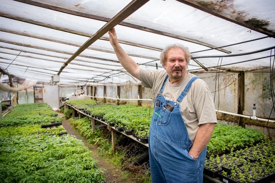 Wade McCourry, the second-generation owner of Troy's Greenhouse and Garden Supply in Burnsville, talks about the plant varieties he has for sale in one of his greenhouses on May 13, 2020. McCourry says this has been his busiest season for springtime vegetables since the Y2K scare of 1999.