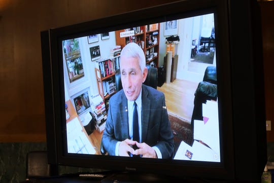 Dr. Anthony Fauci, director of the National Institute of Allergy and Infectious Diseases, speaks remotely during a virtual Senate Committee for Health, Education, Labor, and Pensions hearing, Tuesday, May 12, 2020 on Capitol Hill in Washington.