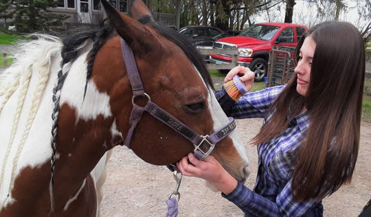 Since age 12, Maggie Dale has been taking good care of Chaco, her American Paint Horse gelding. This Iowa City resident is now studying Equestrian Business Management in college and hopes to own her own stable someday.