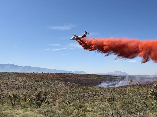 The Basin Fire in northwest Arizonahas spread over 36,000 acres and is 15% contained as of Tuesday afternoon, according to the Bureau of Land Management Arizona.
