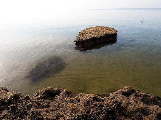 Clump by clump, Barren Island is washing into Tar Bay and the Honga River. The Mid-Chesapeake Bay Island Ecosystem Restoration will add 72 acres to the island off Dorchester County.