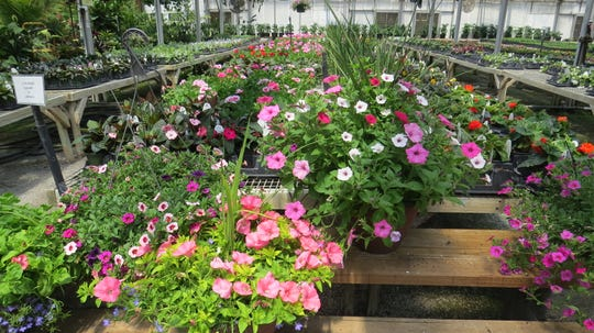 Cerbo's Parsippany Greenhouses and Landscaping Service, established in 1913, is older than Parsippany. Times are hard because of the coronavirus pandemic, , but the four-generation family business is still growing. May 13, 2020.