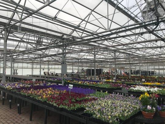 Bristol's Garden Center in Victor