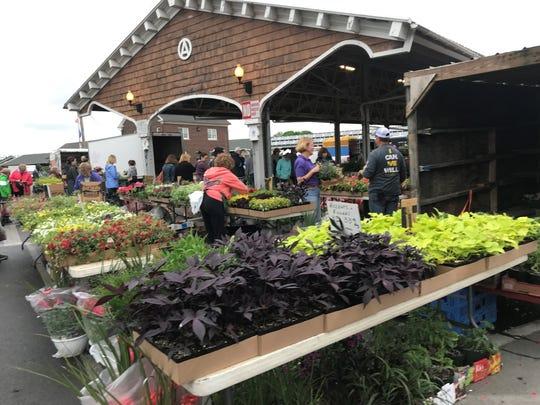 Gardening vendors are at the Public Market Tuesdays, Thursdays and Saturdays.