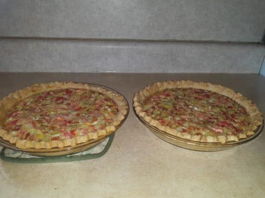 Lovina's rhubarb custard pies cool after baking.