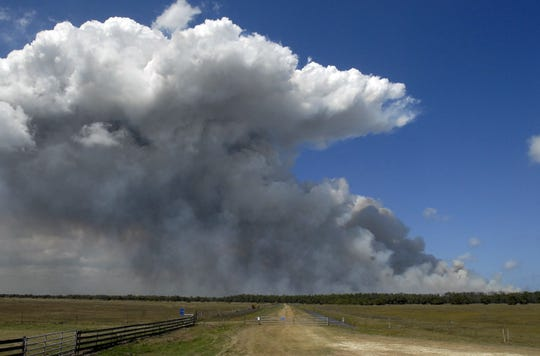 The St. Johns River Water Management District conducts a 4,300-acre controlled burn in 2009 along the Moccasin Island tract of the River Lakes Conservation Area.