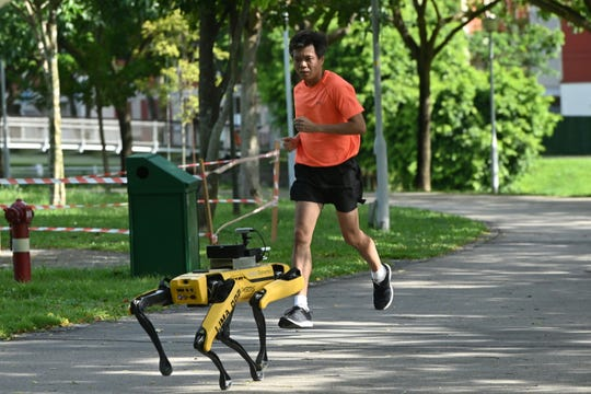 A man jogs past a four-legged robot called Spot, which broadcasts a recorded message reminding people to observe safe distancing as a preventive measure against the spread of the COVID-19 novel coronavirus, during its two-week trial at the Bishan-Ang Moh Kio Park in Singapore on May 8, 2020.