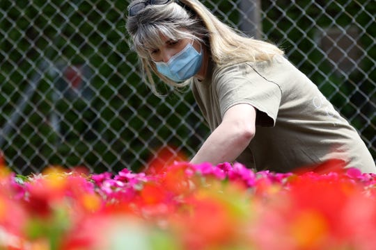 Jaclyn Cavilla, of Camberly Gardens is shown with a new order of flowers in their Bergenfield lot. May 14, 2020