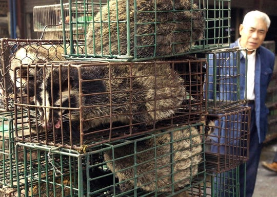 A man looks at caged civet cats in a wildlife market in Guangzhou, capital of south China's Guangdong Province Monday, Jan. 5, 2004. China on Monday confirmed that its first SARS case since an outbreak of the disease was contained in July, 2003 and authorities ordered the emergency slaughter of some 10,000 civet cats and related species after tests linked a virus found in the animals to the patient.