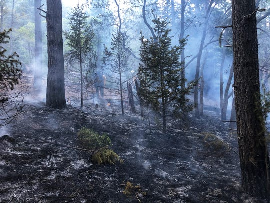 The Bailey Fire in Bailey Canyon near Cloudcroft on May 15, 2020