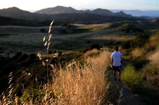 A hiker treks through Rancho Sierra Vista/Satwiwa in Newbury Park on May 16, 2020. The wild grasses are turning brown.