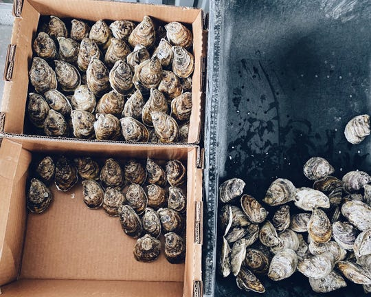 Grand Isle Sea Farms markets its farmed oysters under the name Southern Belle.