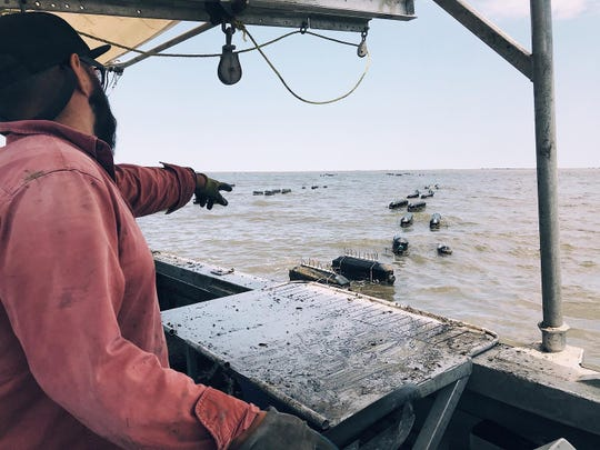 Boris Guerrero of Grand Isle Sea Farms points to the floating cages where his Southern Belle oysters grow.