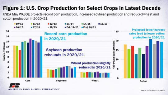 U.S. crop production for corn, soybeans, wheat and cotton over the past decade, including the new 2020/2021 projections.