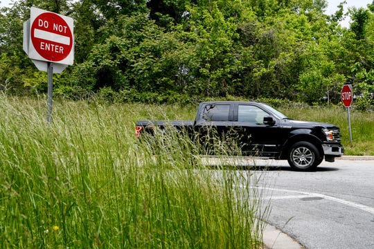 The N.C. DOT has curtailed grass mowing this year from five or six times a year to three cycles this year, starting June 1. Budget reductions related to the pandemic are causing a shortfall in funds. The grass was about waist high at this West Asheville exit on May 13, 2020.