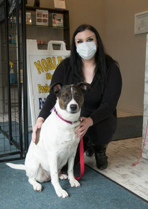 Mindy Kendall, owner of Noble Dog Shoppe & Spa, poses Tuesday, May 19, 2020 with her dog Queenie, a six-year-old pointer mix inside Kendall's Howell dog grooming spa.
