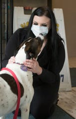 Noble Dog Shoppe & Spa owner Mindy Kendall gets some love from her 6-year-old pointer mix Queenie Tuesday, May 19, 2020 inside Kendall's Howell dog grooming facility.